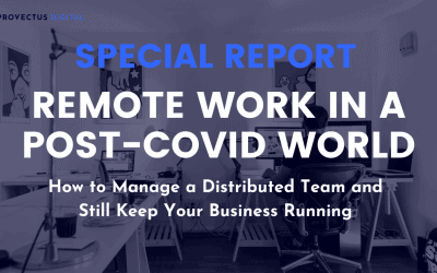 Changing Perceptions Towards Remote Work Due to COVID-19