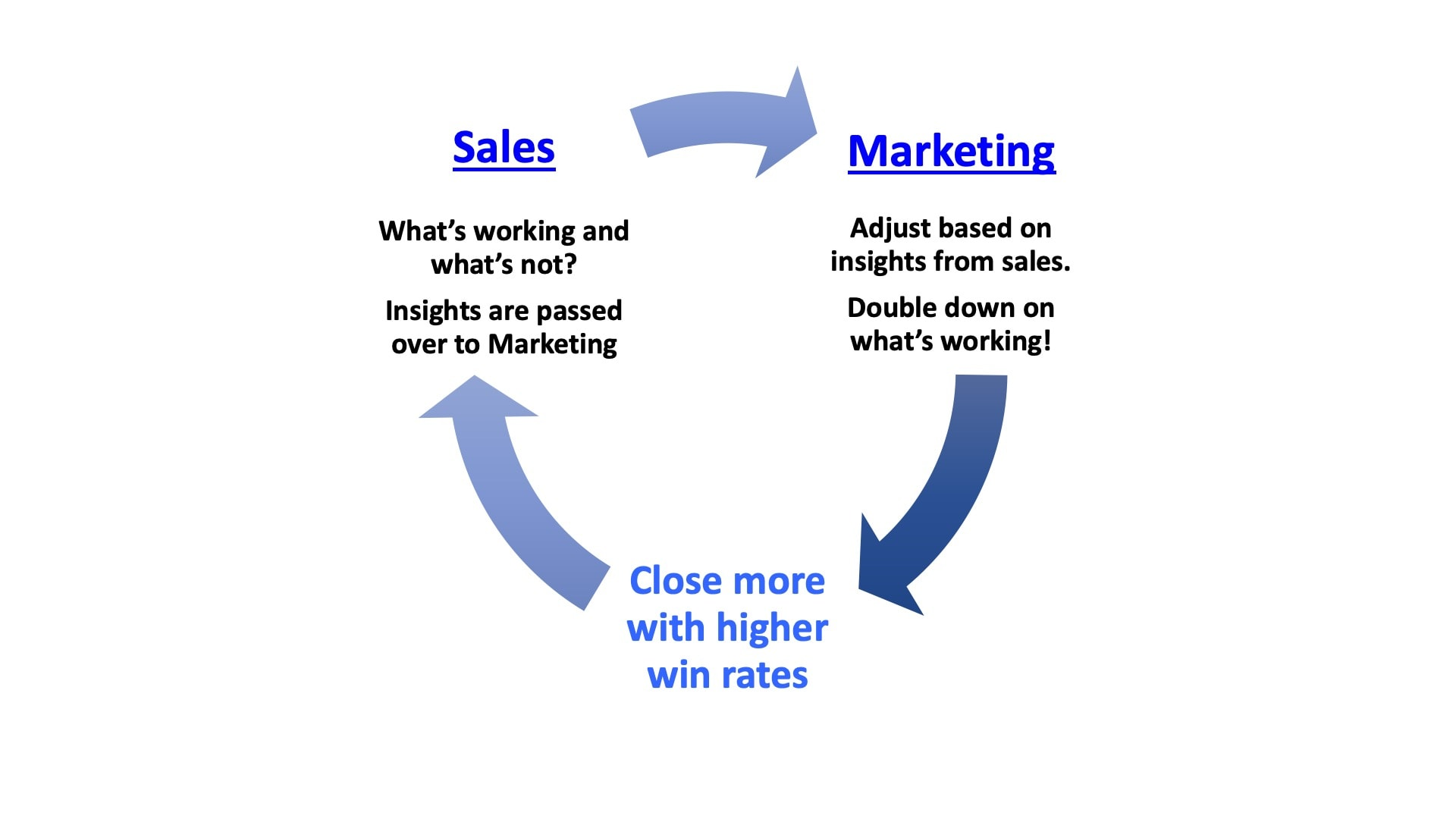 sales and marketing feedback loop